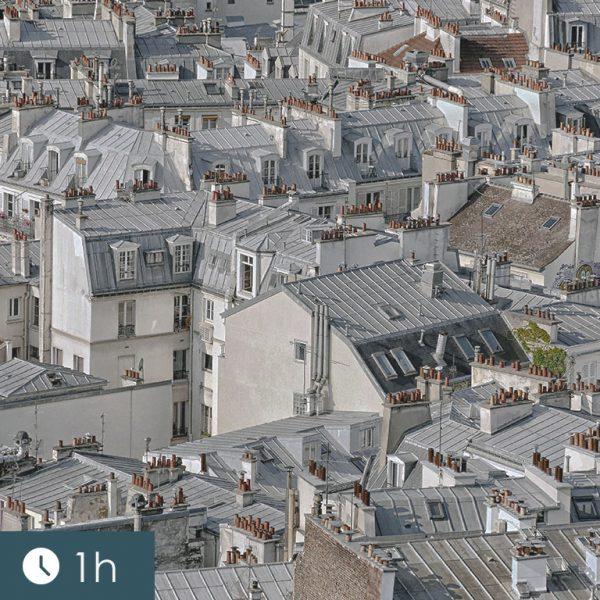 urbanisme-professionnels-immobilier-formation-agent-immobilier-roche-formation-formation-carte-professionnel-agent-immobilier-768x919